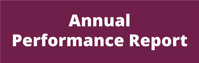 annual performance report button